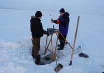 В Омске инженерная защита территории – удел профессионалов