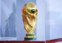 Кубок FIFA в Омске: событие, сравнимое с эстафетой олимпийского огня
