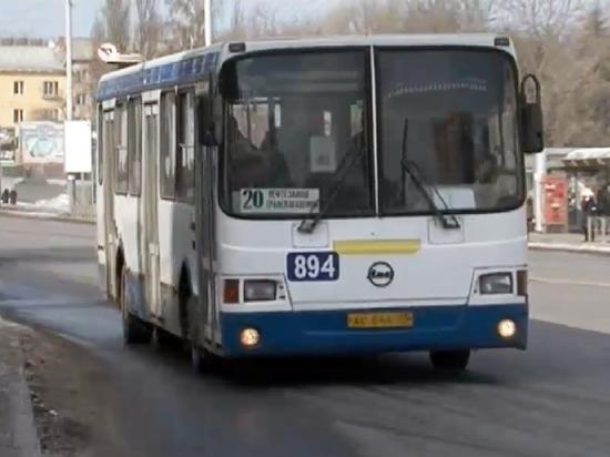 Стоимость проезда в частном и муниципальном транспорте для омичей будет одинаковой